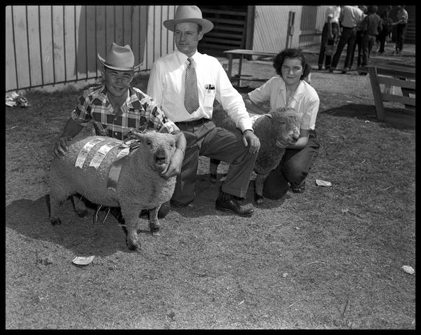 Travis County stock show, 1951. Photo No. ND-51-258a-02, Austin History Center, Austin Public Library